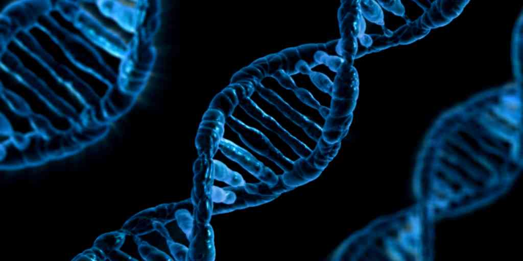 intelligence-avenir-dans-nos-gènes