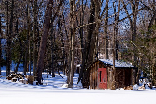 winter shed. (35/365)