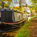 Autumn On The Staffordshire & Worcestershire Canal