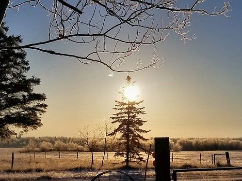 20181209.sun.frost