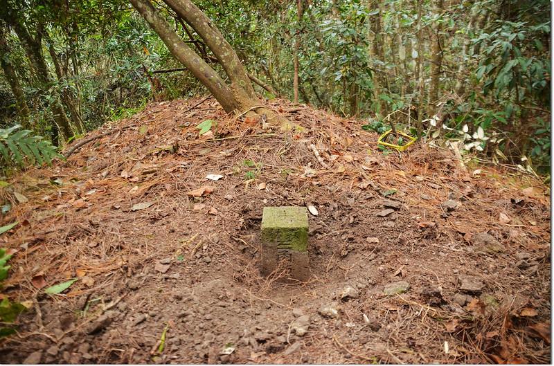 歐帕喀爾山冠字補近(25)山字森林三角點(Elev. 1170 m) 1