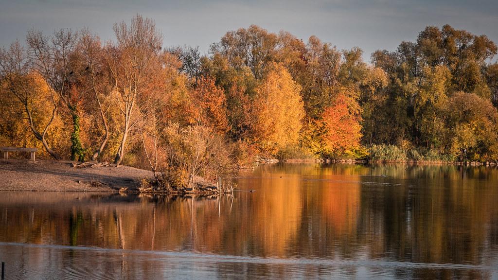 Soir d'automne... 43996180430_790cdfc79c_b