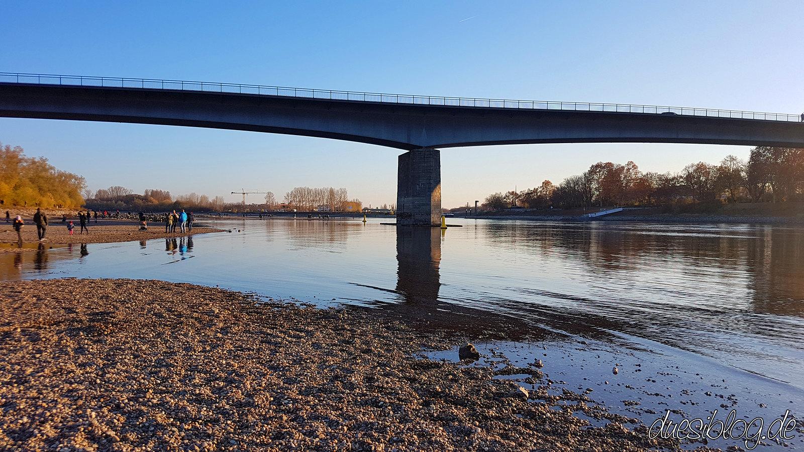 Speyer Rhein Niedrigwasser duesiblog13