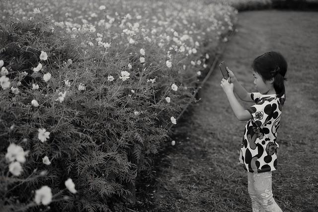 昭和記念公園, Fujifilm X-T10, XF35mmF1.4 R