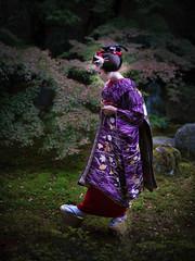 Maiko_20181123_27_2