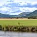 View across River Tay at Aberfeldy (B846), Scotland. UK.