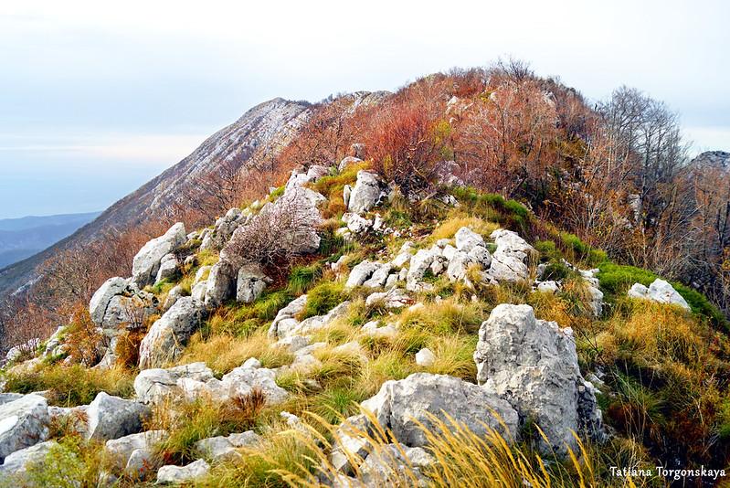 Пейзаж с вершинами хребта