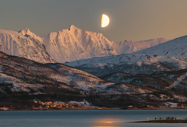 Magic winter light, Nikon D300, Sigma 150-600mm F5-6.3 DG OS HSM | S