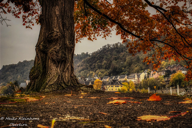 Herbst, Canon EOS 600D, Canon EF 35mm f/2