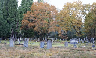 Turning leaves and Headstones