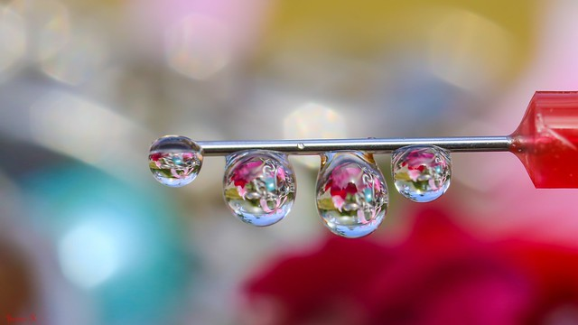 Droplets - 6187