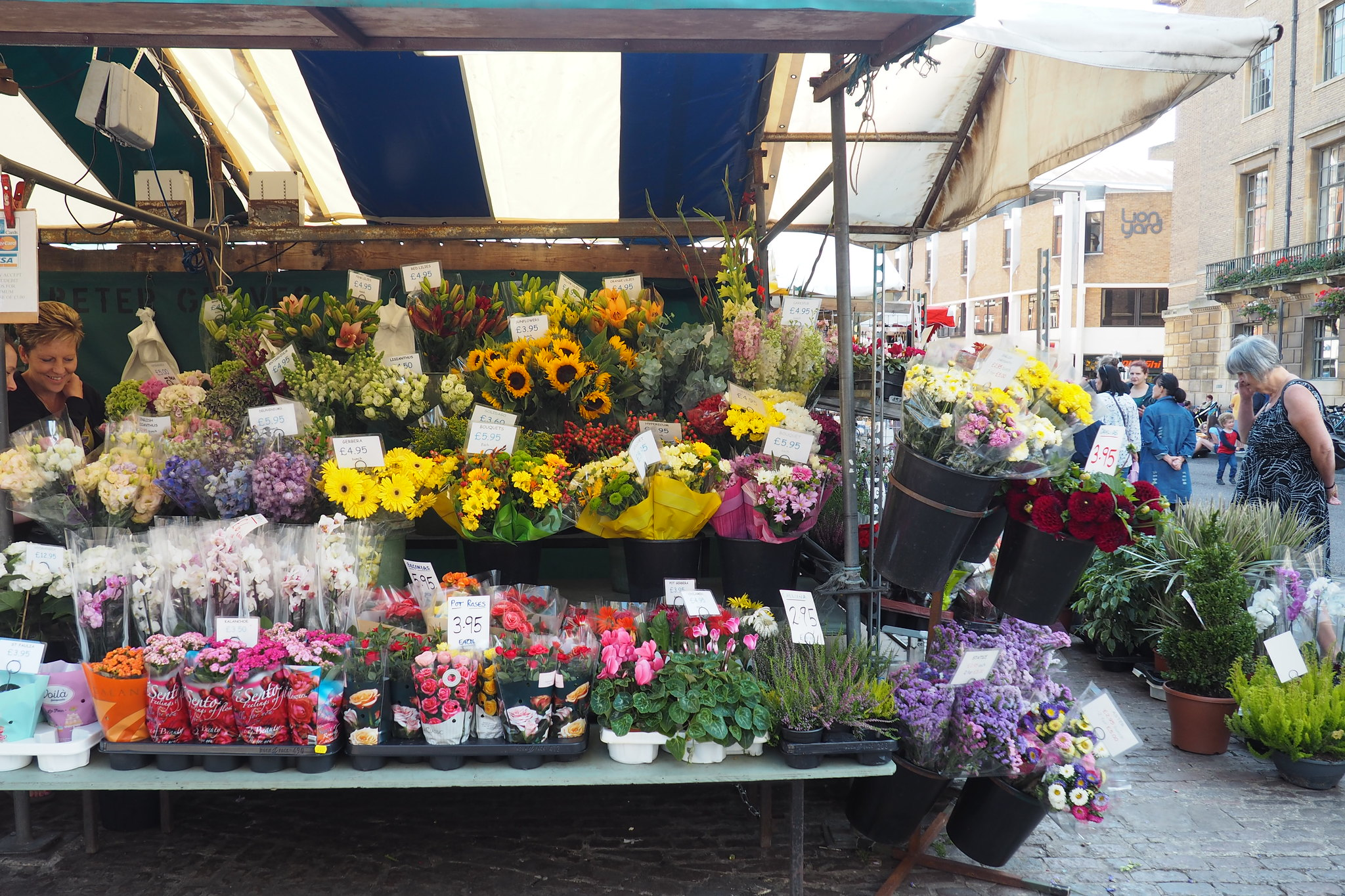 Cambridge Market Flowers