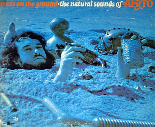 Airto - Seeds on the Ground the Natural Sounds of Airto