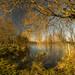 Cossington Lake, Leicestershire.
