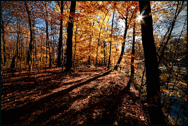 Along Buck Creek 4665_DxO