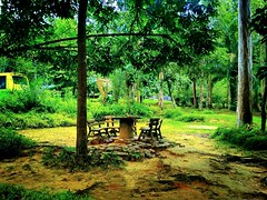 Shah Alam National Botanical Park Taman Botani Negara, Seksyen 8, 40000 Shah Alam, Selangor 03-5510 7048 https://goo.gl/maps/d9nK7H4F9tk  https://foursquare.com/soonlung81  Transportation service: 交通服務: Servicio de transporte: Service de transport: خدمة ا