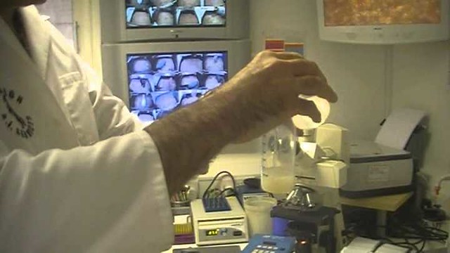 4950 SR 5 million fine for fertilizing through sperm donors in Saudi Arabia 01