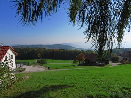 20170930 03 096 ostbay Herbst Berge Wald Baum Wiese Weg