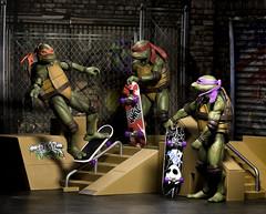 Turtle Skate Park
