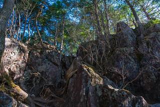 鶏冠神社奥社への道は岩場あり