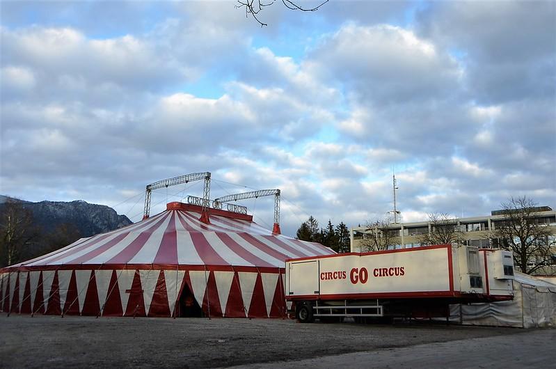 Circus GO 11.12 (3)