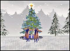 Dec 15 show 8