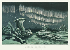 Aurora Borealis in High Latitudes from the book William MacKenzie's National Encyclopedia (1891), a colored illustration of the beautiful polar lights in the night sky. Digitally enhanced from our own original plate.