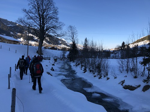 2019-01-25 Adelboden_Fred (60)