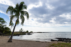 Honokohau bay Park Big island Hawaii