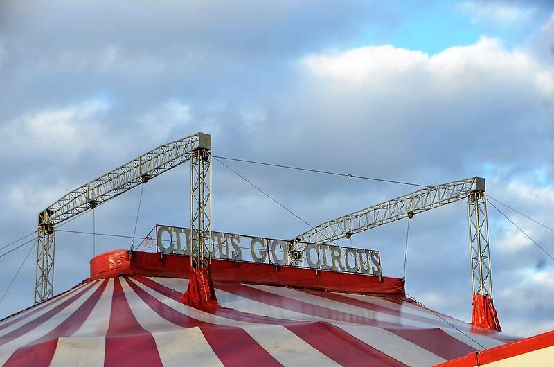 Circus GO 11.12 (2)