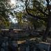 Im historischen Olympia