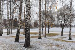 Rovaniemi-SAO-10