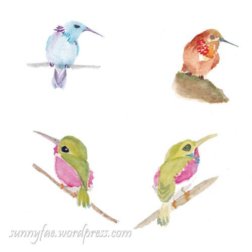 hummingbirds sitting