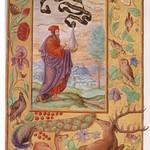 Splendor Solis Plate II