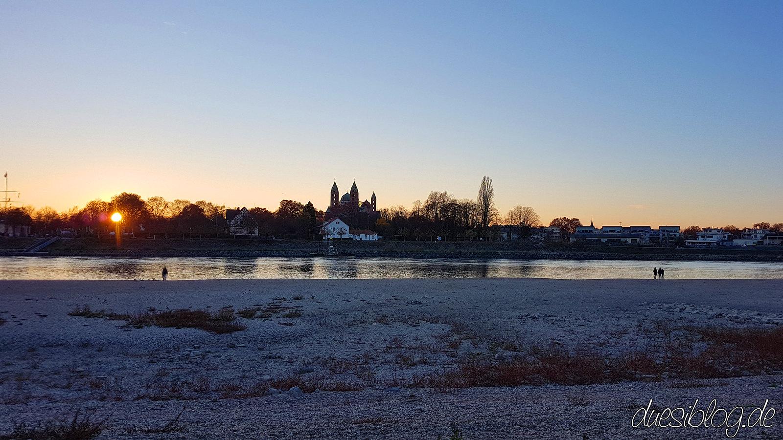 Speyer Rhein Niedrigwasser duesiblog23