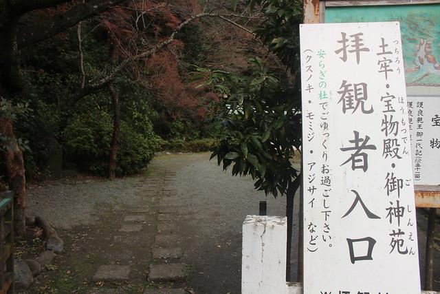 kamakuragu005
