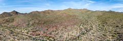 Sonoran Panorama (1)