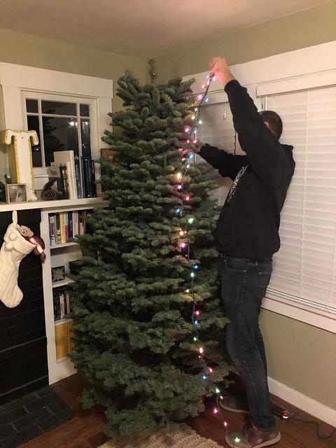 Tree v.2018