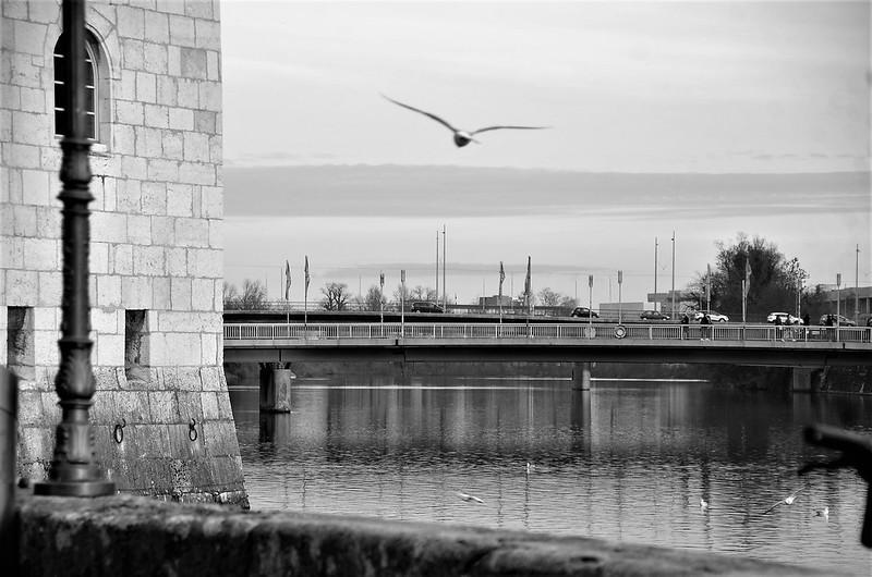 River Aare 01.12.2018