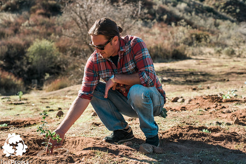 TreePeople Forest Restoration at San Francisquito Canyon