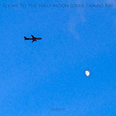 Fly Me To The Half Moon (Over Tampa) Bay - IMRAN™