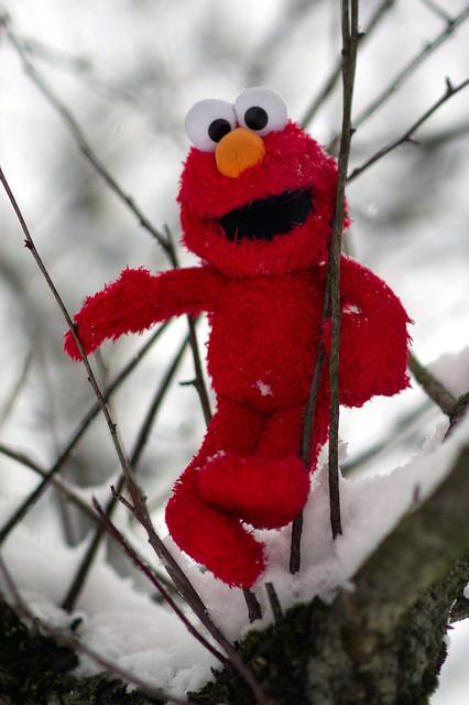 Elmo Wonderland 2