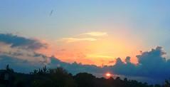 coucher de soleil à sommieres - Photo of Mudaison