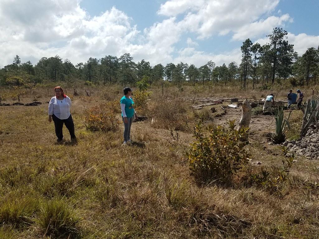 El huerto que libera a las hondureñas