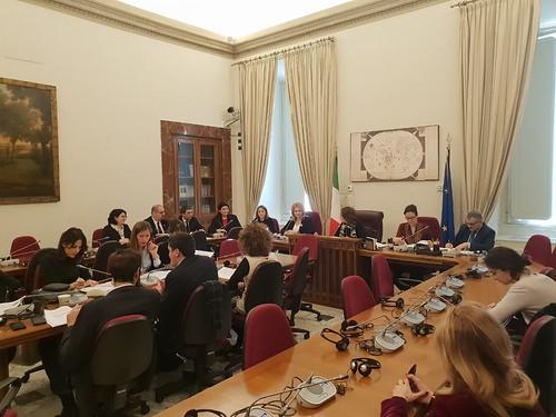 19.12.2018 Vizită la Parlamentul Italiei