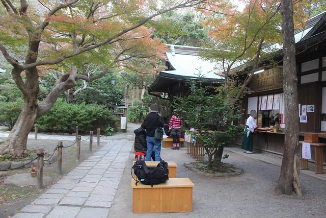 kamakuragu023