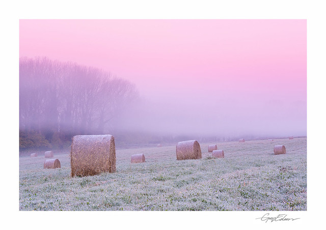 Frosted Bales I