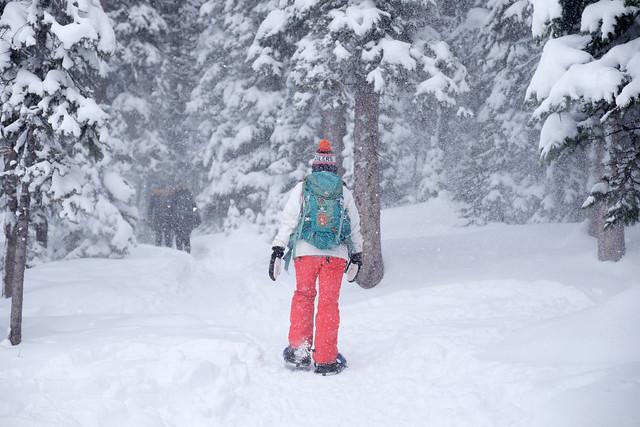 Snowshoeing - Rawson Lake - Jan 2019-10