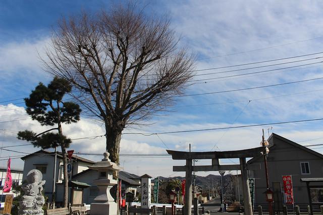 itsukushima015