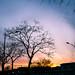 彩霞 Colourful sunset